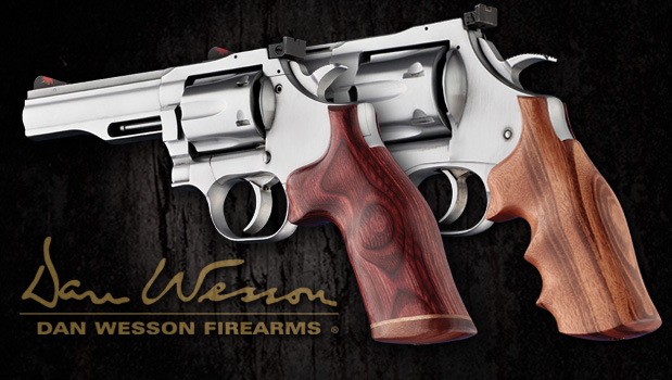 Dan Wesson Grips