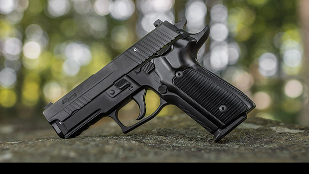 P228 and P229 DA/SA