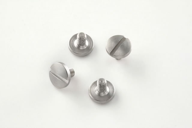 Beretta Screws (4) Slotted - Stainless finish