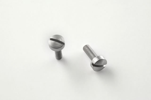 Hi Power Screws (2) Slotted - Stainless Finish