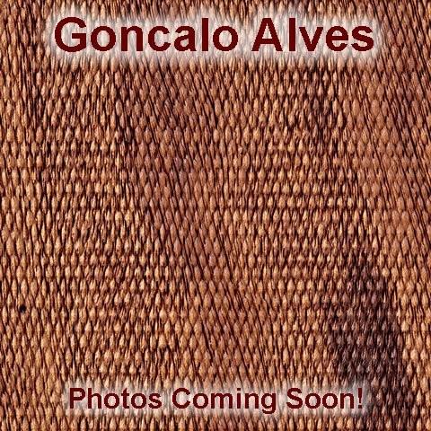 N Rd. Goncalo Alves No Finger Groove Stripe Cap Checkered