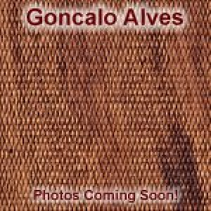 N Rd. Goncalo Alves Checkered